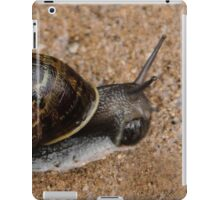 Don't Bother Me, I'm Eating Lunch! iPad Case/Skin
