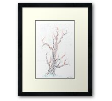 Genetic branches (hand drawn ink on paper) Framed Print