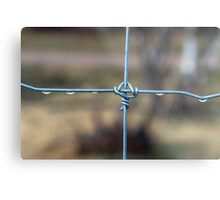 Water On The Fence Metal Print