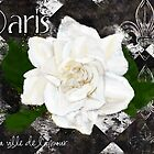 Paris, the city of love, Gardenia floral art print by Glimmersmith