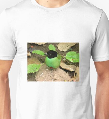 The green breasted bird.  Unisex T-Shirt