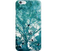 Reflecting pool iPhone Case/Skin