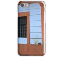 Green Door on a House iPhone Case/Skin