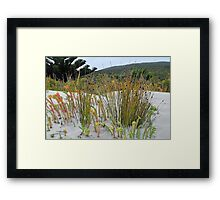 DUNE GRASSES Framed Print