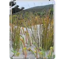 DUNE GRASSES iPad Case/Skin