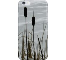 Haze morning around the frozen lake  iPhone Case/Skin