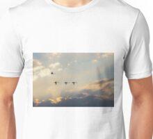 Swan Flight at Sunset Far South NSW Unisex T-Shirt