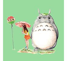 grown up totoro Photographic Print