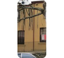 Terrace Houses in the Rocks, Sydney iPhone Case/Skin