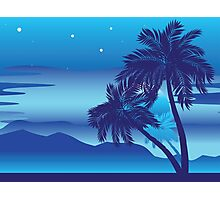 Palm Tree at Night Photographic Print
