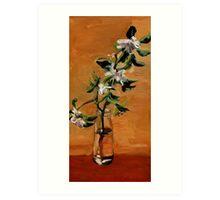 Apple Blossum Art Print