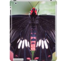 Colorful Butterfly iPad Case/Skin