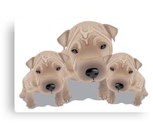 Cute puppies Canvas Print