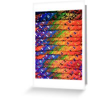 Colorful Knit Sweaters Greeting Card
