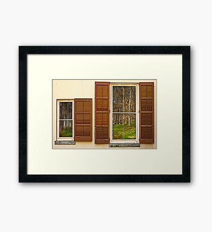 The woods, reflected Framed Print