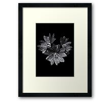 Backyard Flowers In Black And White 11 After The Storm Framed Print