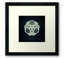 Icosahedron Bloom Framed Print