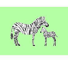 Patchwork Zebras  Photographic Print