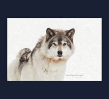 Timber Wolf in Snow Kids Tee