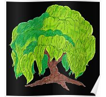 Weeping Willow Poster