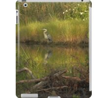 Heron in rich colors iPad Case/Skin