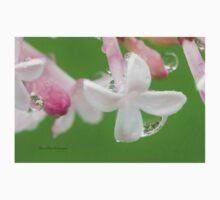 Lilac Blossom Macro One Piece - Short Sleeve