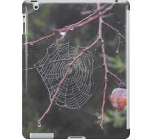 Persimmon Web iPad Case/Skin
