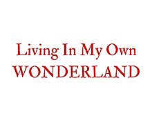 Living In My Own Wonderland (All Red) Photographic Print