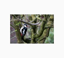 Great Spotted Wood Pecker in woodland. Classic T-Shirt