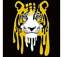 Que le hace una mancha mas al tigre Photographic Print
