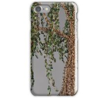 Summer Willow Tree - Dark iPhone Case/Skin