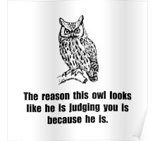 Owl Judge You Poster