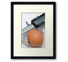 Egg under calibration Framed Print