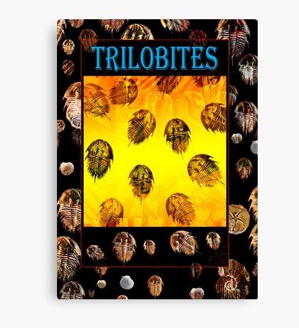 Trilobites Canvas Print