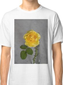 Single Yellow Rose with Blue Classic T-Shirt
