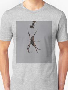 Spider,West Ryde,Australia 2016 T-Shirt