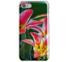 White And Pink Tulips iPhone Case/Skin