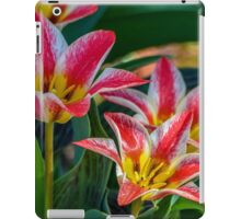 White And Pink Tulips iPad Case/Skin