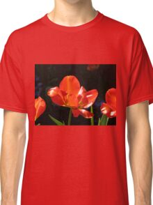 Dazzling Red Tulips Classic T-Shirt