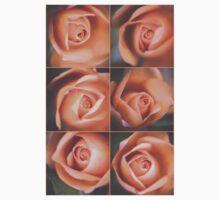 Pale roses Baby Tee