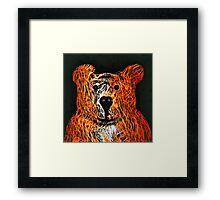 Honey Bear Framed Print