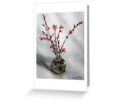 nectarine blossom in round vase Greeting Card