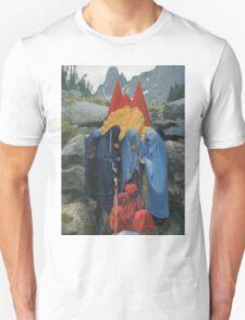 Healing Mountain T-Shirt