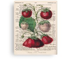 Botanical Strawberries Canvas Print
