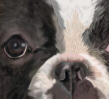 Cute Boston Terrier Art Graphic Sticker