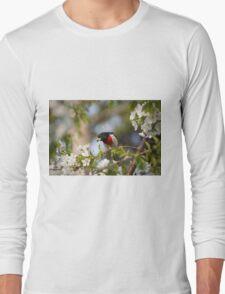 Harbinger of Summer Long Sleeve T-Shirt