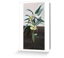 Yellow eucalyptus blossom      Greeting Card