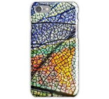 In Mother Nature's Cathedral iPhone Case/Skin