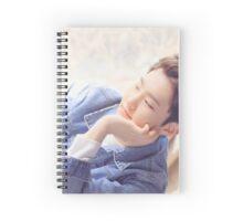 DINO Seventeen Spiral Notebook