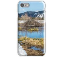 Nice Digs iPhone Case/Skin